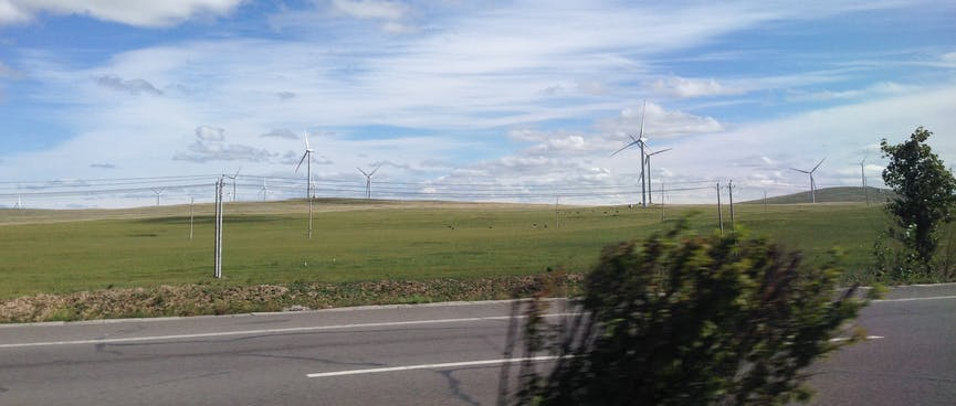 Fields of wind turbines spin in the strong breeze.