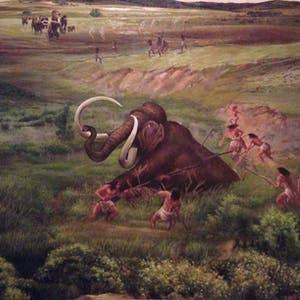View enlargement of A painting shows locals spearing and lassoing an injured mammoth.