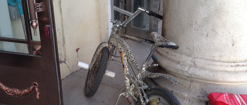 A stunt BMX is painted with spots and a cheetah.