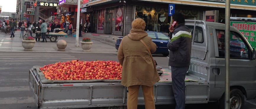 The flat deck of a small ute is covered in red apples.