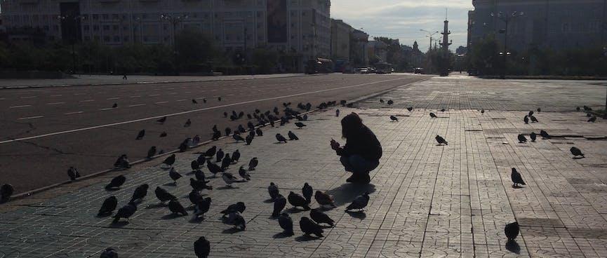 Wanna crouches amid dozens of pigeons, in Chita.