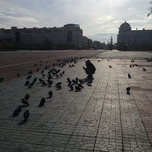 View enlargement of Wanna crouches amid dozens of pigeons, in Chita.