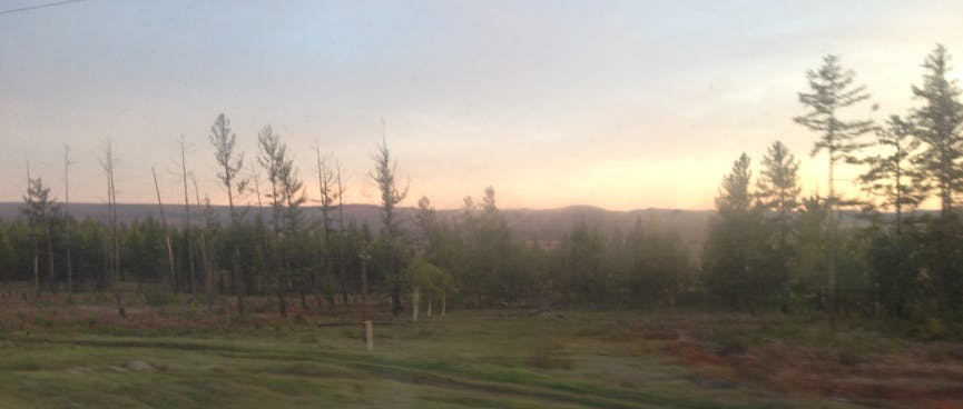 A blur of empty fields and forest, out the train window.