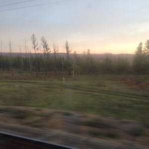 View enlargement of A blur of empty fields and forest, out the train window.