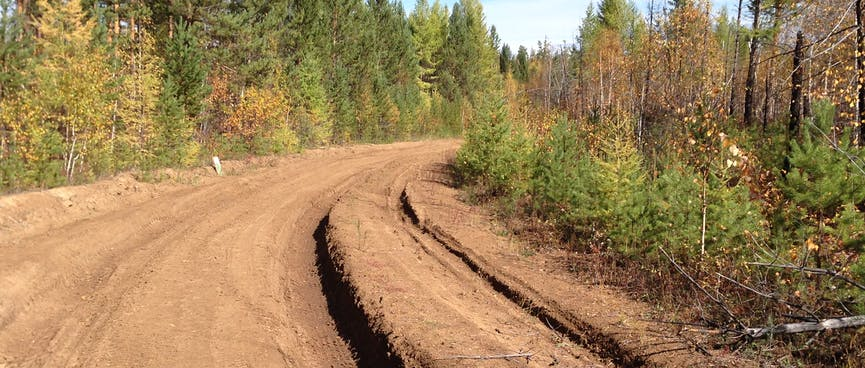 Tyre tracks form deep gouges in the dirt road.
