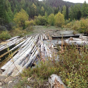 View enlargement of Long, pale logs are laid on top of a flowing river.