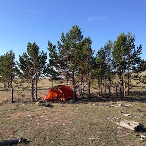 View enlargement of My tent sits in a small grove of trees.