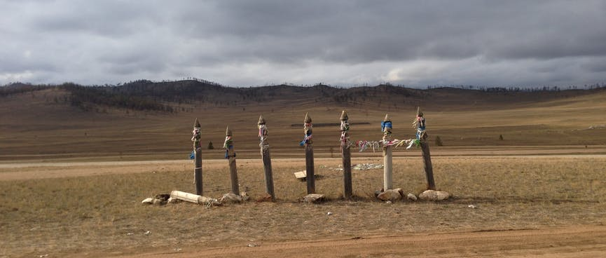 A line of ribboned posts.