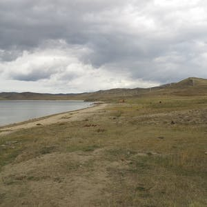 View enlargement of The grassy foreshore and a narrow strip of sand.