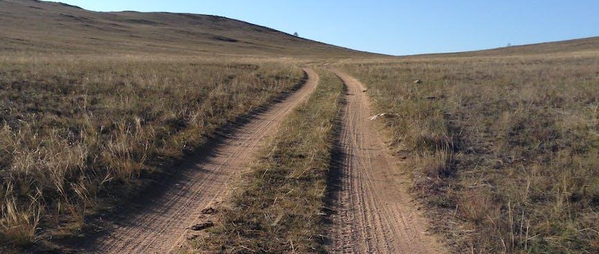 Dirt 4WD tracks cut through a green field.