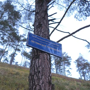 View enlargement of An official blue and white sign is attached to a tree trunk.