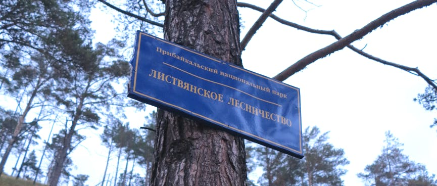 An official blue and white sign is attached to a tree trunk.