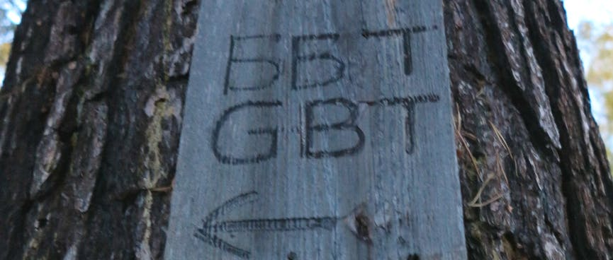 A small wooden sign points the way to GBT.