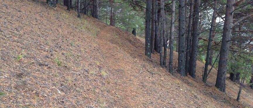 The path cuts across a steep hillside.