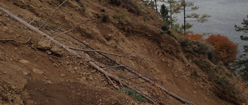Fallen trees and exposed clay mark a steep wash out.