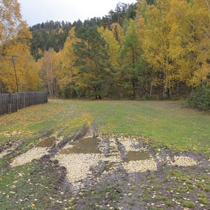 View enlargement of Muddy tyre tracks.