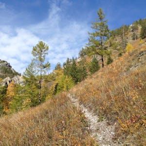 Narrow path to the summit.