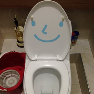 At least the toilet was happy.