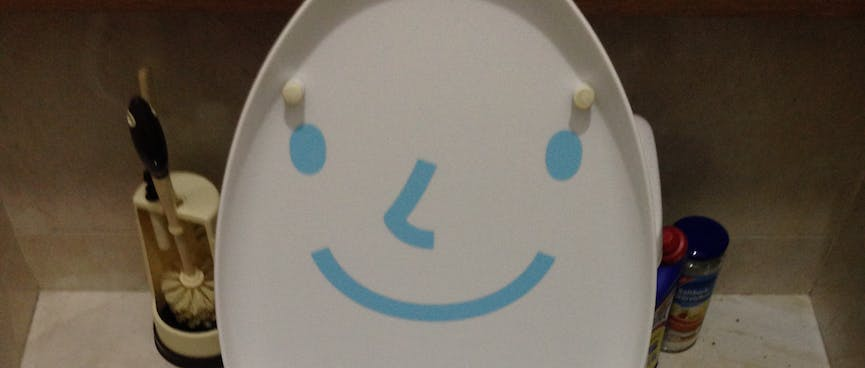 A toilet seat painted with a smiling face.