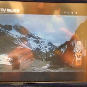 View enlargement of Nature images on the inflight TV show.