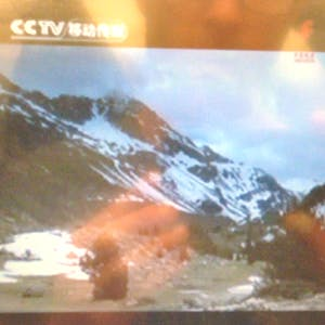 Nature images on the inflight TV show.