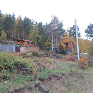 Wooden houses set into the forest.