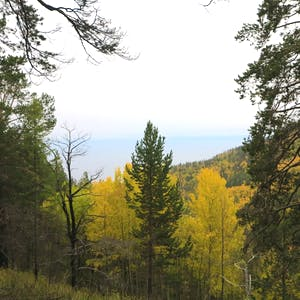 View enlargement of Forested mountains and the lake beyond them.