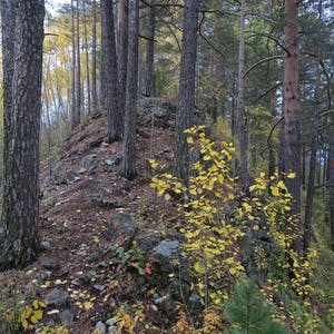 The trail runs up a forested ridge.