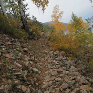 View enlargement of Fist sized rocks cover an exposed portion of the trail.