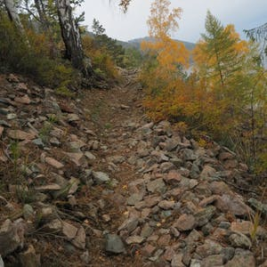 Fist sized rocks cover an exposed portion of the trail.