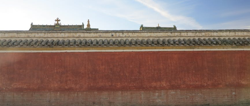Rooftops are just visible over the top of a red wall.