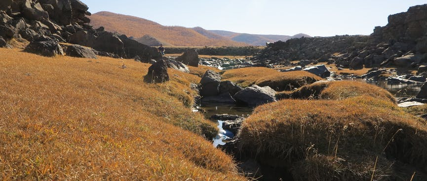 Brown grass, rocks and water on the river bed.