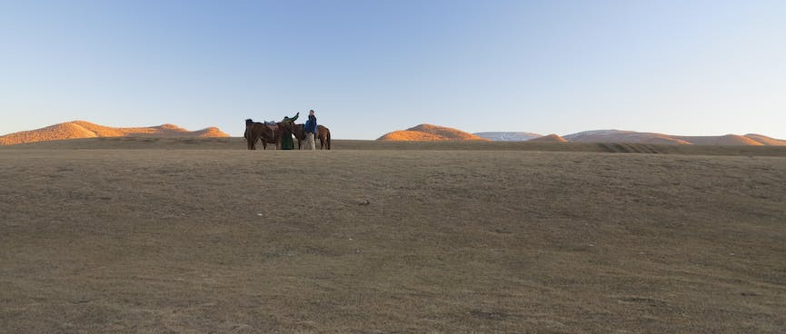 Horses and their riders wait in the distance.