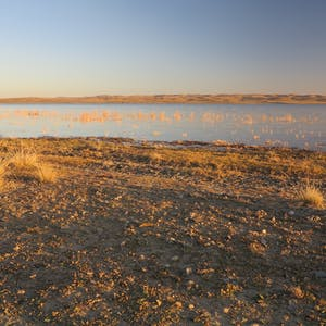 Lake Ugii ambience.