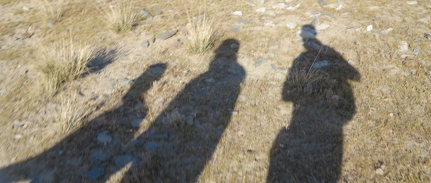 Shadows of people are cast on the grass.