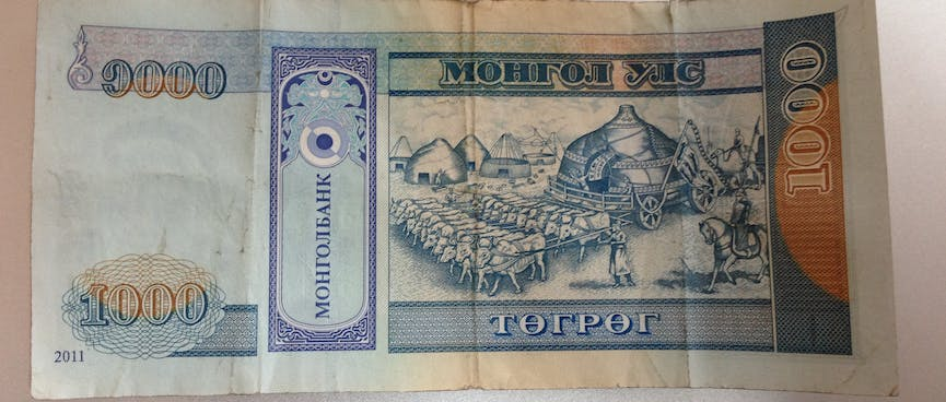 An assembled ger being drawn by a large team of cattle, on the back of a 1000 Tugrik bill.